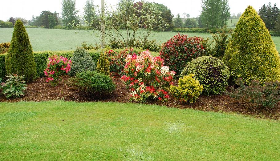 garden makeover - Garden Design Northern Ireland
