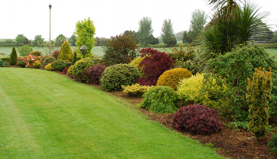 Landscaping northern ireland mcclelland landscapes for Garden design northern ireland